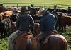 Mark Elworthy Ranch-8287