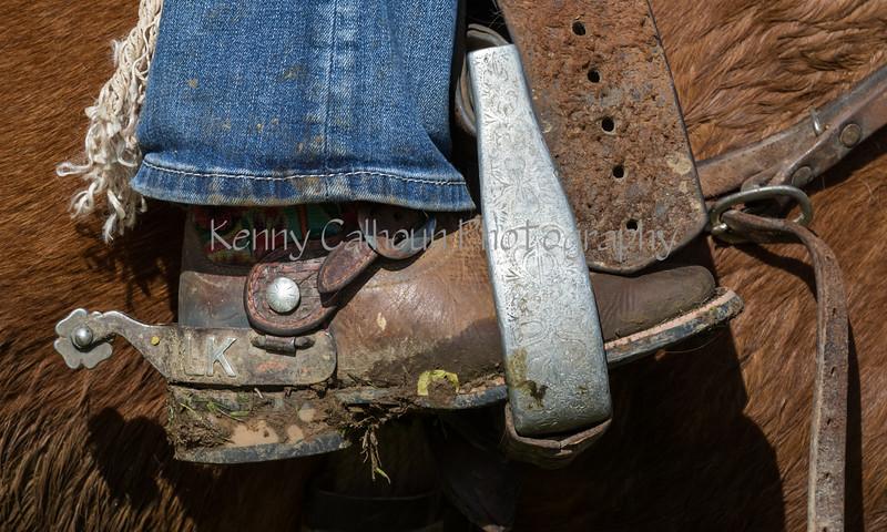 Mark Elworthy Ranch-8671