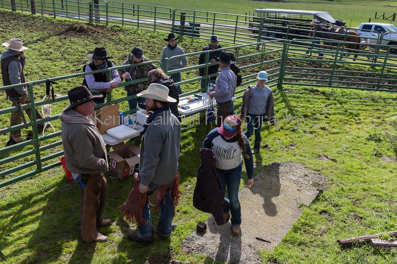 Mark Elworthy Ranch-8485