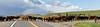 Mark Elworthy Ranch-9886-2