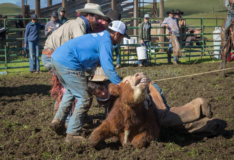 Mark Elworthy Ranch-9349