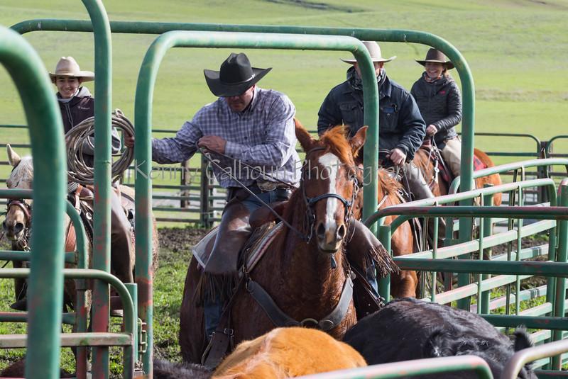 Mark Elworthy Ranch-8443