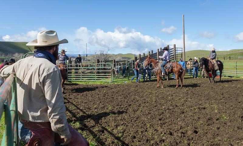 Mark Elworthy Ranch-9441