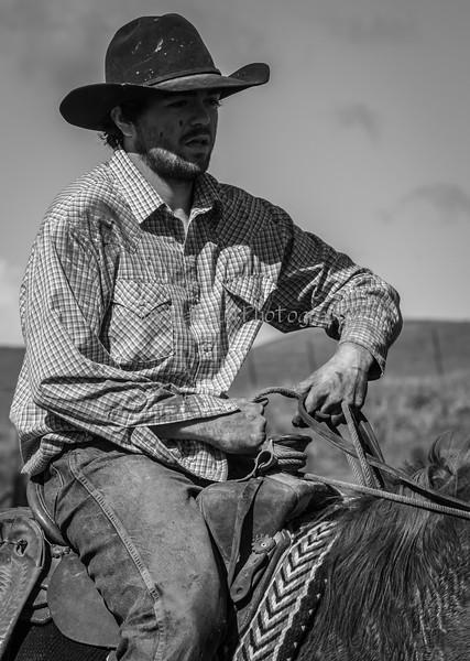 Mark Elworthy Ranch--21