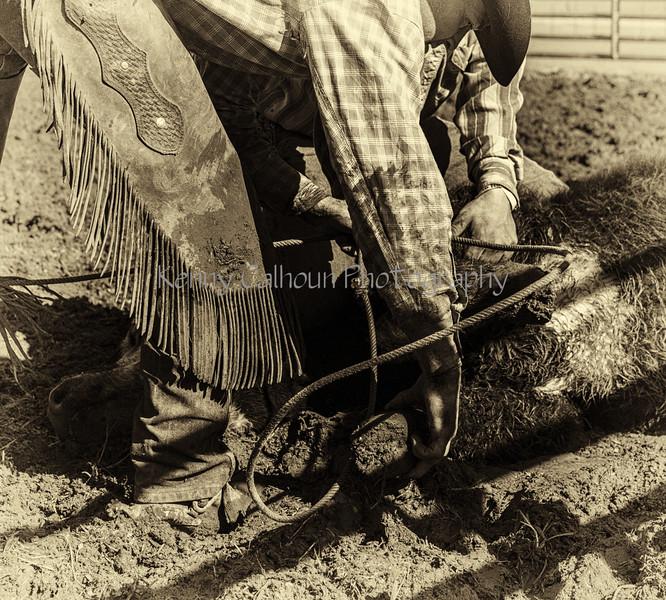 Mark Elworthy Ranch--28