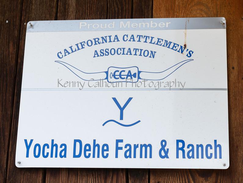 3-20-2020  Yocha Dehe Branding-6162