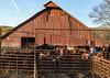 3-28 Mark Elworthy Ranch Gathering-6931