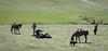 3-28 Mark Elworthy Ranch Gathering-7787