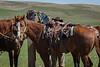 3-28 Mark Elworthy Ranch Gathering-8069-2