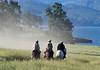 4-29 Pacific Livestock951A9727