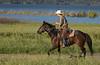 4-29 Pacific Livestock951A9677