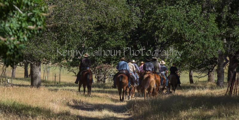 YL&C Bobcat Ranch 5-19-2018-6789