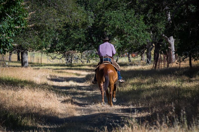 YL&C Bobcat Ranch 5-19-2018-6792