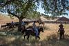 YL&C Bobcat Ranch 5-19-2018-7609