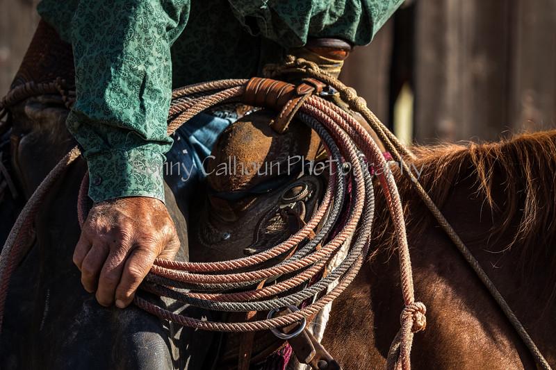 YL&C Bobcat Ranch 5-19-2018-6679