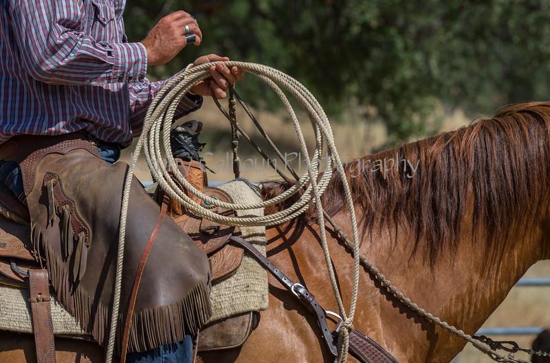 YL&C Bobcat Ranch 5-19-2018-7280