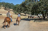 YL&C Bobcat Ranch 5-19-2018-7358