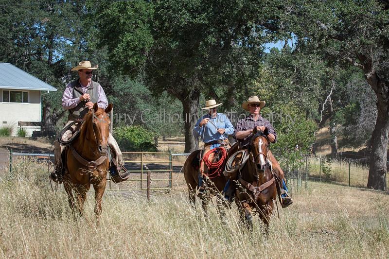 YL&C Bobcat Ranch 5-19-2018-6955