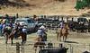 YL&C Bobcat Ranch 5-19-2018-7343