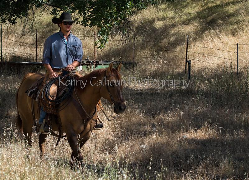 YL&C Bobcat Ranch 5-19-2018-6862