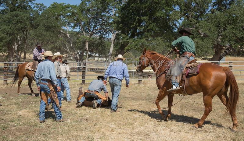 YL&C Bobcat Ranch 5-19-2018-7688