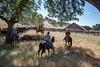 YL&C Bobcat Ranch 5-19-2018-7613