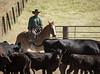 YL&C Bobcat Ranch 5-19-2018-7142