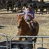 YL&C Bobcat Ranch 5-19-2018-7372