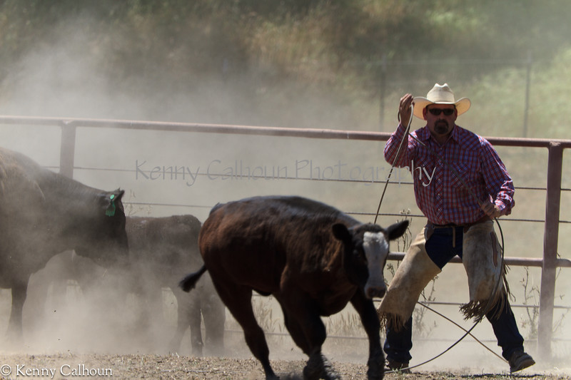 Yolo_Land_&_Cattle_May_20,_2012_(25_of_65)