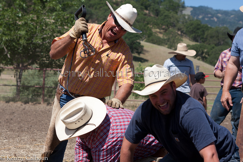 Yolo_Land_&_Cattle_May_20,_2012_(52_of_65)