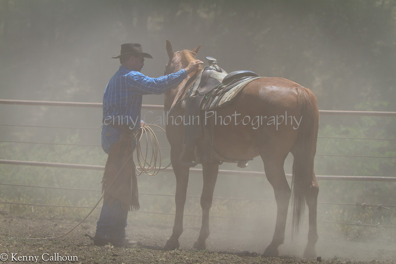 Yolo_Land_&_Cattle_May_20,_2012_(50_of_65)