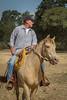 5-22 Yolo Land & CattleIMG_5241