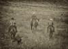5-22 Yolo Land & CattleIMG_5251-Edit-Edit