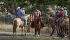 5-22 Yolo Land & CattleIMG_5258-Edit