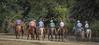 5-22 Yolo Land & CattleIMG_5286-Edit