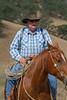 5-22 Yolo Land & CattleIMG_5240