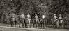 5-22 Yolo Land & CattleIMG_5286-Edit-Edit