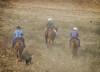 5-22 Yolo Land & CattleIMG_5251-Edit