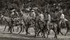 5-22 Yolo Land & CattleIMG_5268-Edit-Edit