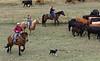 5-25-19 Smith Ranch-8607