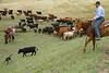 5-25-19 Smith Ranch-3429