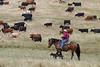 5-25-19 Smith Ranch-8634