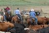 5-25-19 Smith Ranch-9201