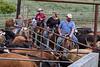 5-25-19 Smith Ranch-9024