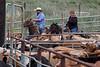 5-25-19 Smith Ranch-8909