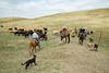 5-25-19 Smith Ranch-3503