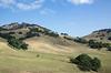 5-25-19 Smith Ranch-2986
