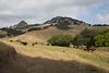 5-25-19 Smith Ranch-2883