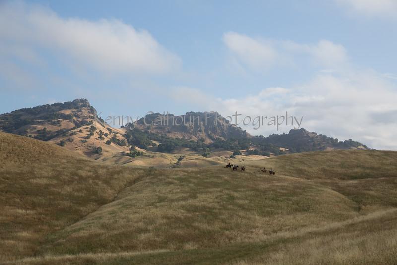 5-25-19 Smith Ranch-2730