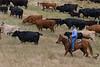 5-25-19 Smith Ranch-8672